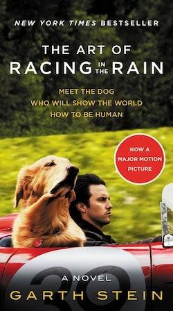 The Art of Racing in the Rain MTI