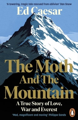 Moth and the Mountain