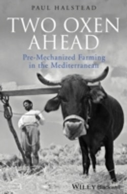 Two Oxen Ahead