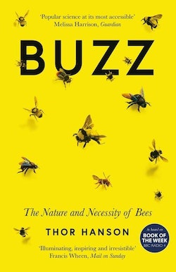 Buzz - the nature and necessity of bees