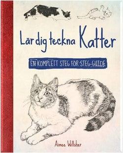Lär dig teckna katter