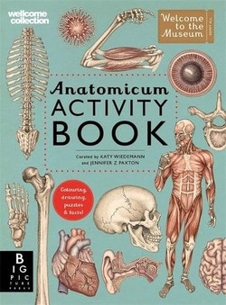 Anatomicum Activity
