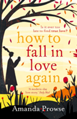 How To Fall In Love Again
