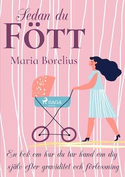 Sedan du fött : en bok om hur du tar hand om dig själv efter graviditet och
