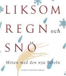 Liksom regn och snö : möten med den nya Bibeln