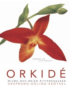 Orkidé. Drömmen om evig skönhet