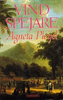 Vindspejare : boken om Abel målaren