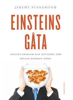 Einsteins gåta : gåtor och problem som kan lösas - om du tänker som Einstein!