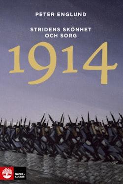 Stridens skönhet och sorg 1914 : första världskrigets första år i 106 korta kapitel