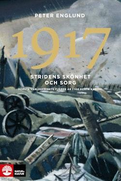Stridens skönhet och sorg 1917 : första världskrigets fjärde år i 108 korta kapitel