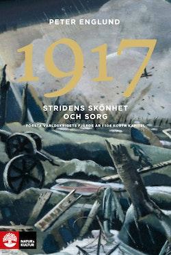 Stridens skönhet och sorg 1917 : första världskrigets fjärde år i 108 korta
