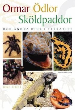 Ormar, ödlor, sköldpaddor och andra djur i terrariet