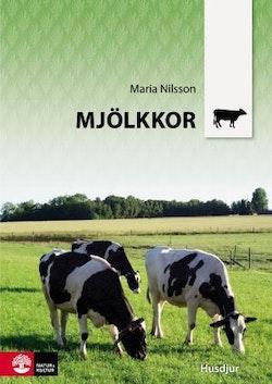 Husdjur Mjölkkor