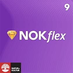 NOKflex Matematik 9, Elev