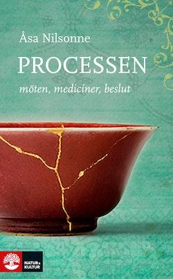 Processen : möten, mediciner, beslut