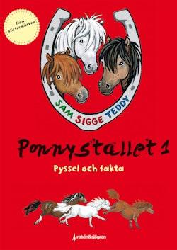 Ponnystallet 1 - Pyssel och fakta