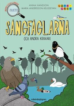 Sångfåglarna - och andra kraxare : Intresseklubben