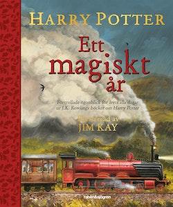 Harry Potter: Ett magiskt år