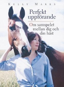 Perfekt uppförande: Om samspelet mellan dig och din häst