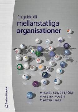 En guide till mellanstatliga organisationer