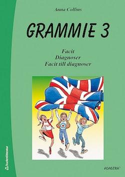 Grammie 3 Facit med diagnoser