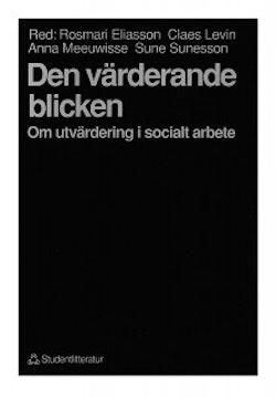 Den värderande blicken - Om utvärdering i socialt arbete