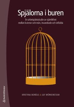 Spjälorna i buren : en arbetsplatsstudie av ojämlikhet mellan kvinnor och män, invandrade och infödd