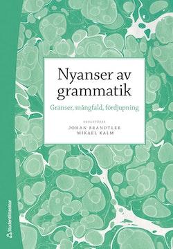 Nyanser av grammatik : gränser, mångfald, fördjupning