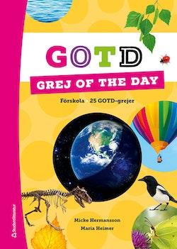 Grej of the day i förskolan