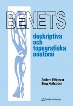 Benets deskriptiva och topografiska anatomi