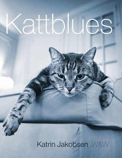 Kattblues