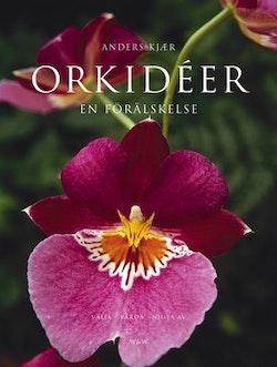 Orkidéer : en förälskelse