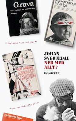 Ner med allt? : essäer om protestlitteraturen och demokratin, cirka 1965-1975