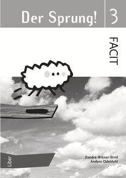 Der Sprung 3 Facit
