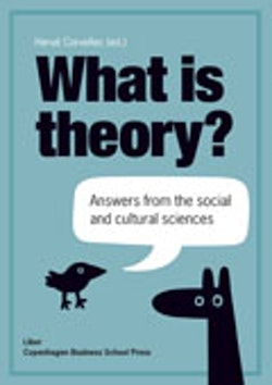 What is theory? : answers from the social and cultural sciences
