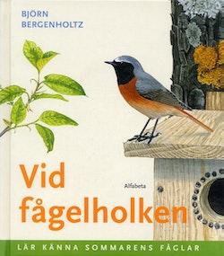 Vid fågelholken : Lär känna sommarens fåglar