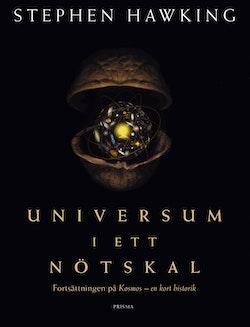 Universum i ett nötskal
