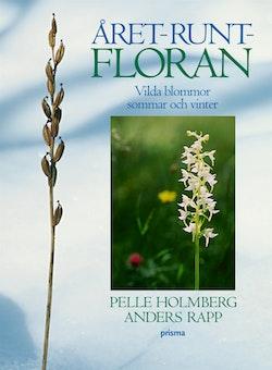 Året-runt-floran : Vilda blommor sommar och vinter