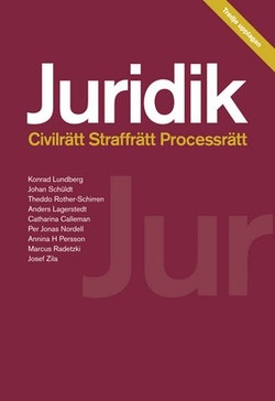 Juridik - civilrätt, straffrätt, processrätt 3:e upplagan