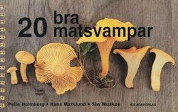 20 bra matsvampar