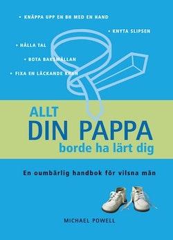 Allt din pappa borde ha lärt dig : en oumbärlig handbok för vilsna män