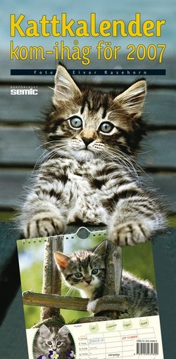 Kattkalender - kom-ihåg för 2007