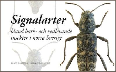 Signalarter bland bark- och vedlevande insekter i norra Sverige
