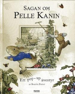 Sagan om Pelle Kanin : ett pop-up-äventyr