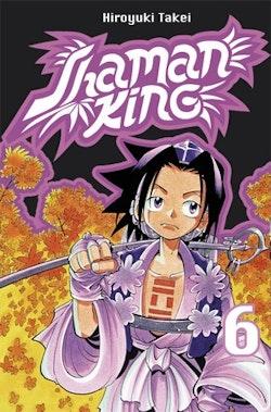 Shaman King 06 : Resan till Izumo