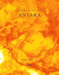 Lägesrapport från Aniara : tre essäer