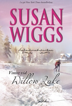 Vinter vid Willow Lake