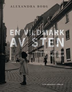En vildmark av sten : Stockholm i litteraturen 1897-1916