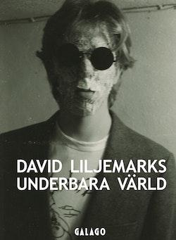 David Liljemarks underbara värld : Verk i urval 1978-2018
