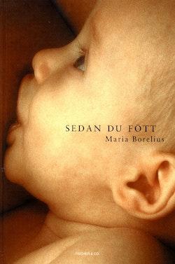 Sedan du fött : en bok om den nyblivna mammans kropp och själ